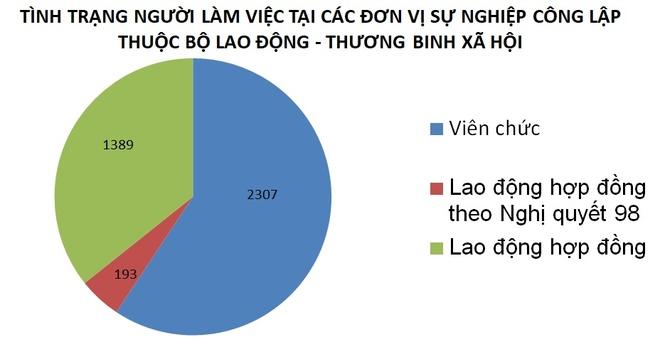 To cong tac Chinh phu kiem tra tai Bo Lao dong - Thuong binh va Xa hoi hinh anh 2