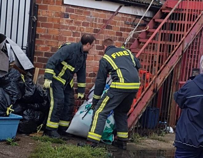 Lính cứu hỏa giải cứu con lợn sướng nhất thế giới