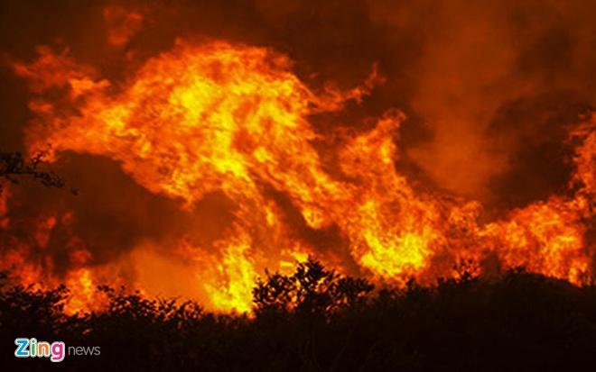 EVN lo lắng các vụ cháy rừng có thể đe dọa an toàn lưới điện