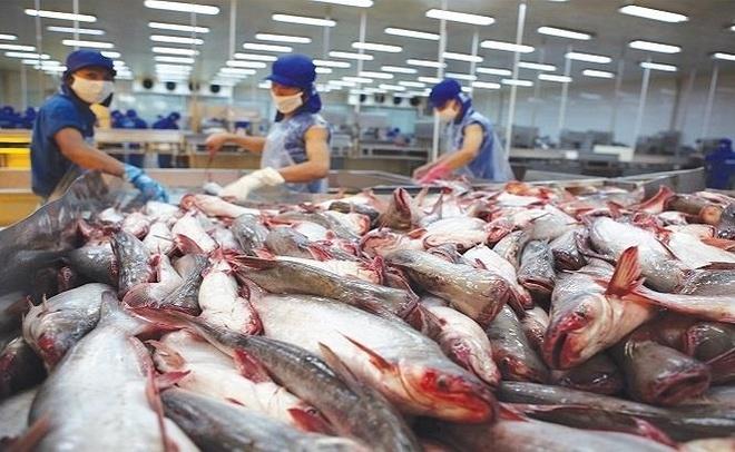 Thai Lan tang nhap khau ca tra Viet Nam hinh anh 1
