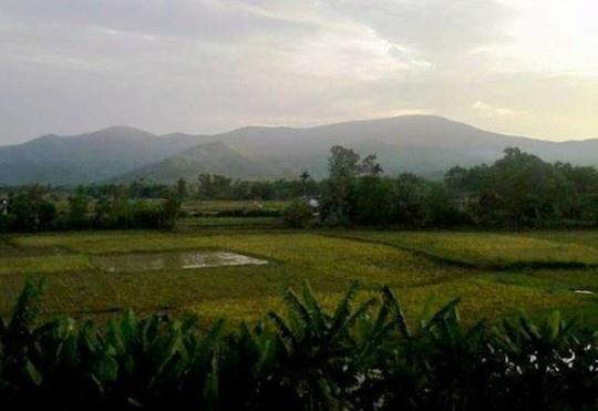 Di trang diem co dau, bi lua dua vao rung hiep dam hinh anh 1 Khu vực núi Nưa, nơi Nguyễn Ngọc Hưng đã giở trò hiếp dâm.