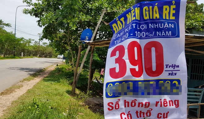 Pho thu tuong chi dao thanh tra dat nong nghiep o Phu Quoc hinh anh