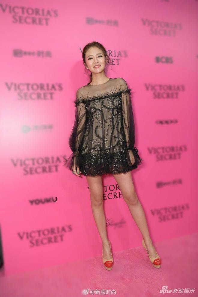 Bieu cam kho hieu cua thien than noi y Victoria's Secret 2017 hinh anh 12
