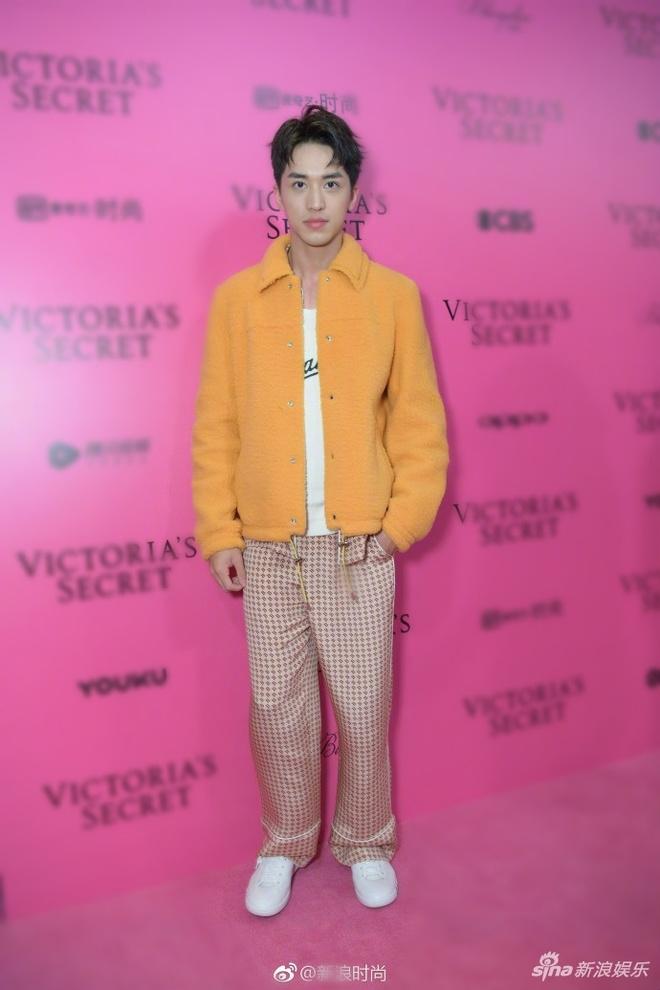 Bieu cam kho hieu cua thien than noi y Victoria's Secret 2017 hinh anh 14
