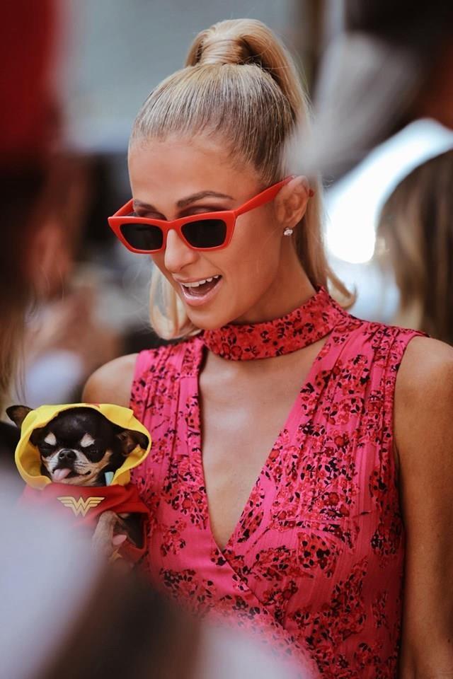 Paris Hilton dan cho tham du show thoi trang anh 2