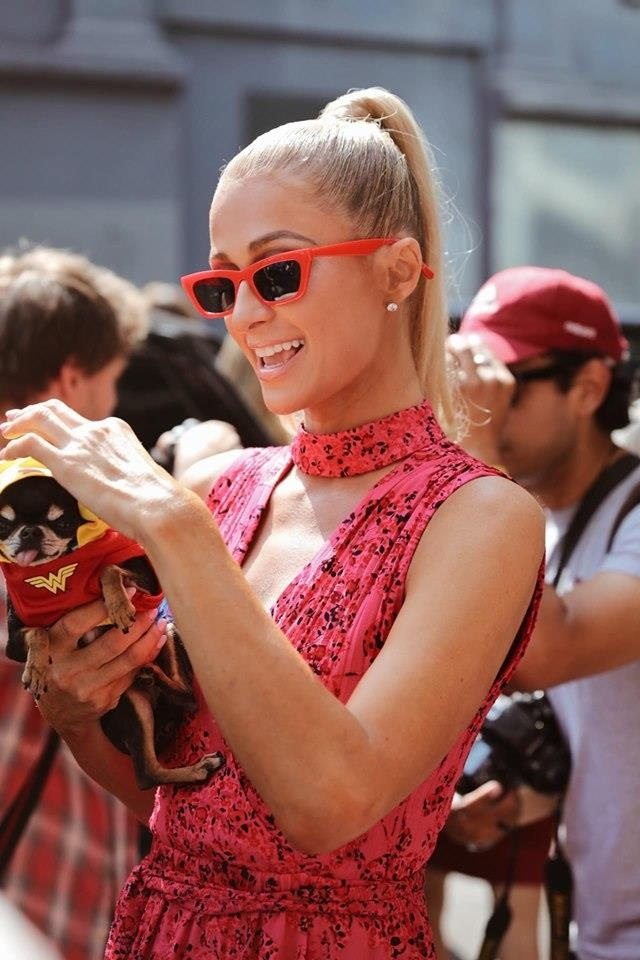 Paris Hilton dan cho tham du show thoi trang anh 1