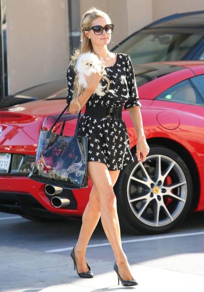 Paris Hilton dan cho tham du show thoi trang anh 3