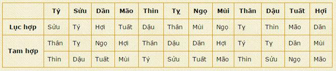 Chon tuoi xong nha Tet Binh Than nhu the nao? hinh anh 1