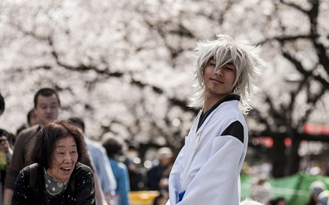 Hoa anh dao no ro khap the gioi hinh anh 5 Ueno là một trong những công viên đông đúc và nổi tiếng nhất của Nhật Bản, với hơn 1.000 cây anh đào lung linh khoe sắc.