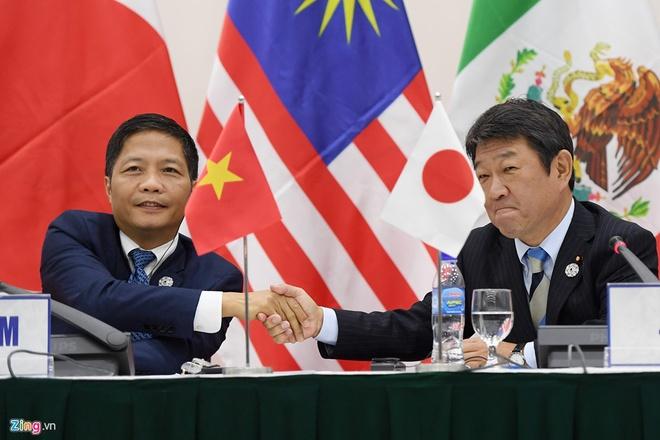 Nhat Ban muon ky TPP-11 vao thang 3/2018 hinh anh 1