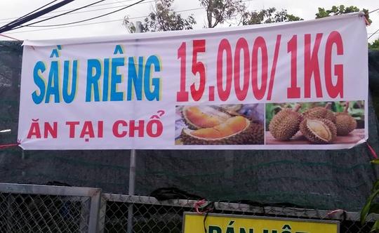 Thuc hu ve sau rieng an tra hat gia 15.000 dong/kg hinh anh
