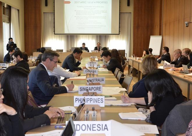 Cac nen kinh te APEC ung ho Nam APEC 2017 tai Viet Nam hinh anh 1