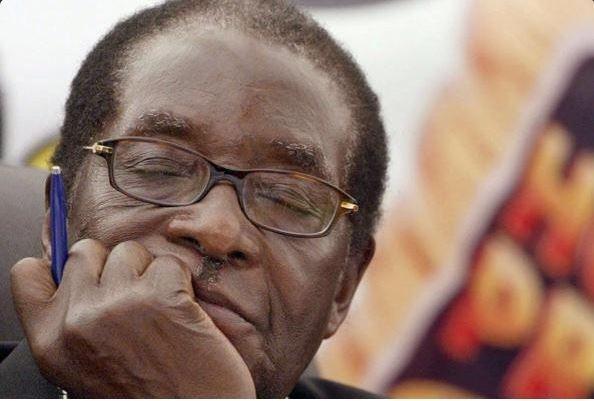 Nhung tu the ngu gat cua tong thong Zimbabwe hinh anh