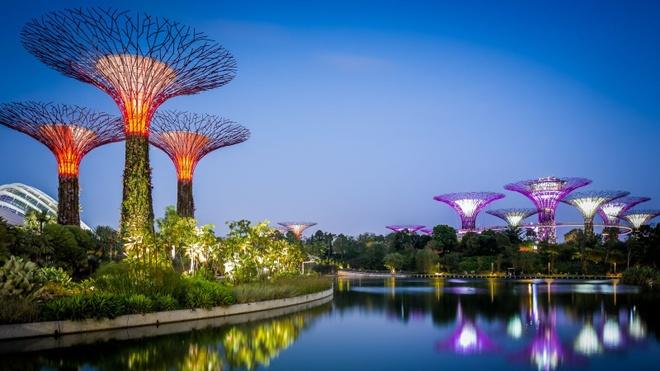 Singapore - con rong chau A hinh anh