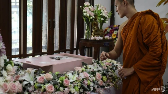 Trao luu to chuc tang le cho thu cung o Thai Lan hinh anh 1