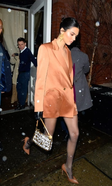 Kendall Jenner lang xe hang hiem cua Louis Vuitton tu nam 2001? hinh anh 2
