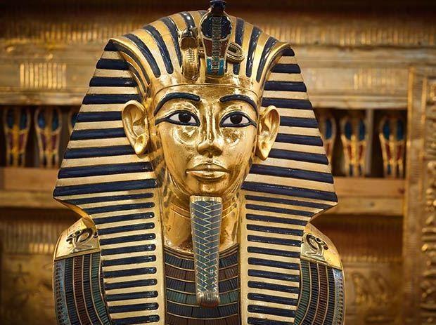 Loai ran can chet nu hoang Cleopatra anh 4