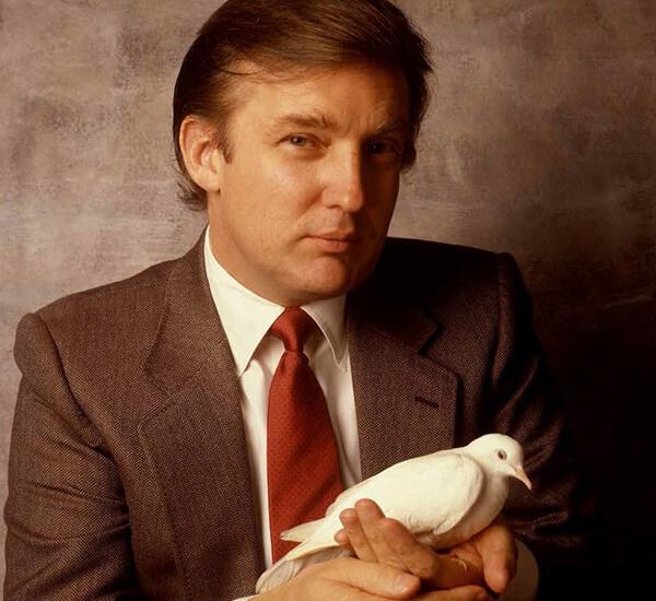 Hai phu nu noi bi Trump so mo tren may bay, thang may hinh anh 1