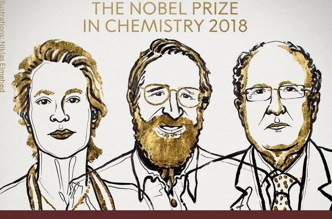 Nobel Hoa hoc 2018 cho nghien cuu 'Darwin trong ong nghiem' hinh anh