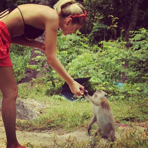 Theo chan sao: Sharapova khoe dang tren bien hinh anh 4