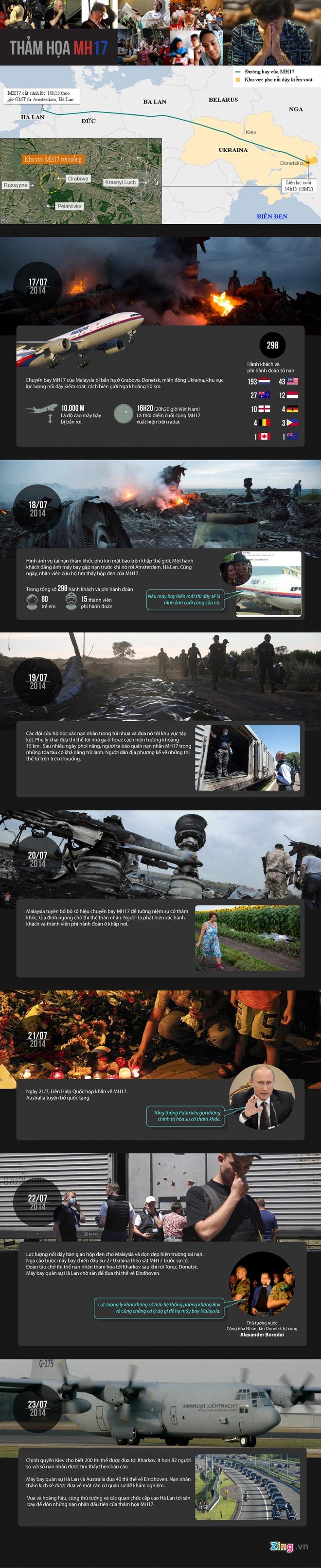 Toan canh tham hoa MH17 lam the gioi bang hoang hinh anh 1