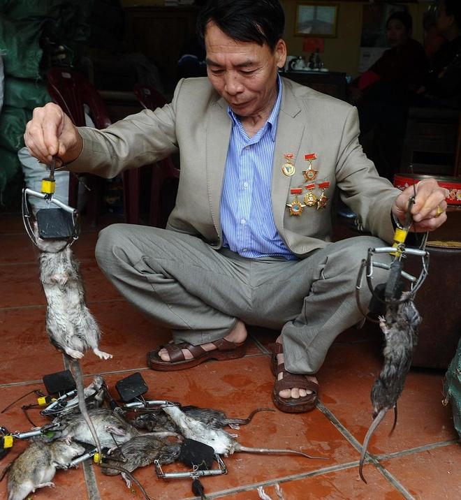 'Vua diet chuot' cua Viet Nam len bao nuoc ngoai hinh anh 3