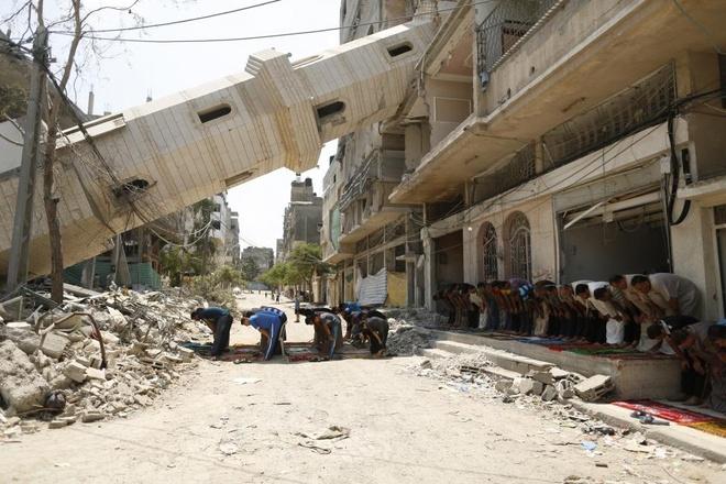 Hinh anh cua nam 2014: Mau nhuom do dai Gaza hinh anh 10
