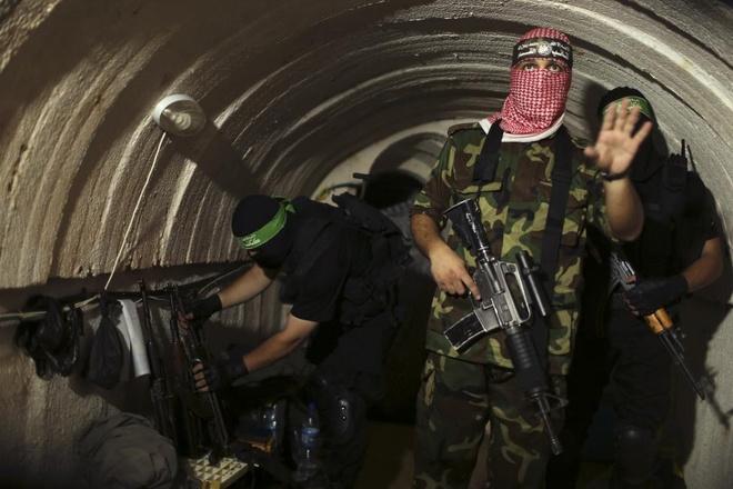 Hinh anh cua nam 2014: Mau nhuom do dai Gaza hinh anh 3