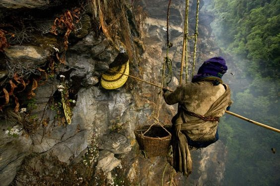 San mat ong tren vach nui dung dung cua day Himalaya hinh anh 8