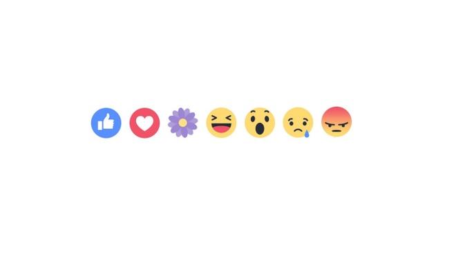 Facebook co them bieu tuong cam xuc 'Bong hoa' hinh anh 1