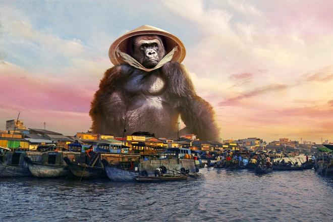 Du lich Viet Nam 2017: Tu phim truong King Kong den ngoi sao chau A hinh anh