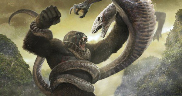 Dao dien 'Kong' tu choi thuc hien bom tan 'Godzilla vs Kong' hinh anh 2