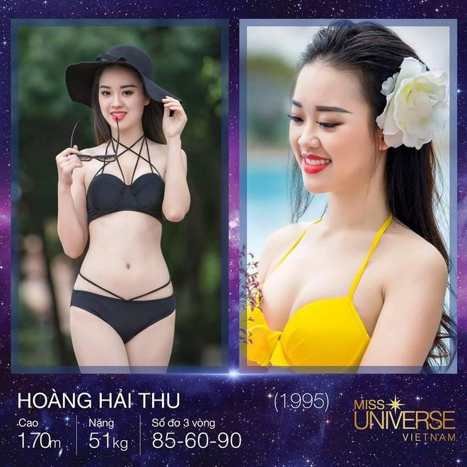 ung vien Hoa hau Hoan vu Viet Nam 2017 anh 3
