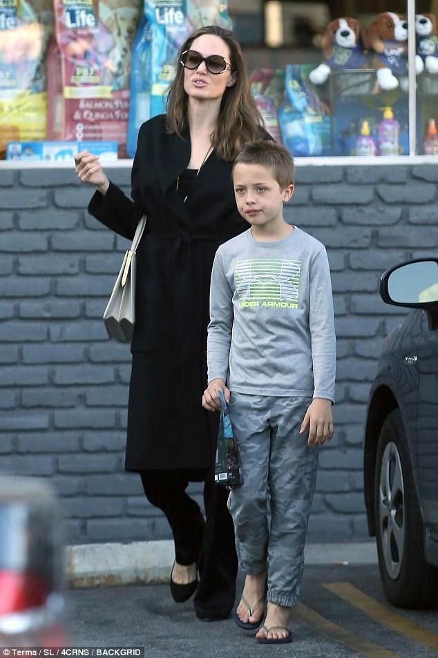 Tiet lo chi phi ton kem nuoi 6 con cua Brad Pitt va Angelina Jolie hinh anh 3