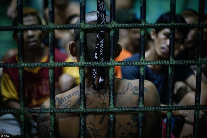 Gan 60.000 nguoi nghien o Philippines dau thu vi so bi giet hinh anh 11