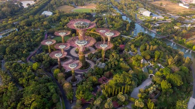 Singapore bắt đầu mở cửa lại du lịch