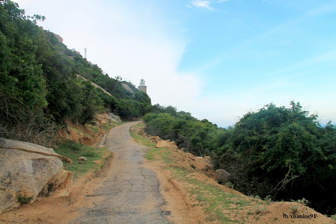 Nang gio o Mui Dinh - Ninh Thuan hinh anh 13