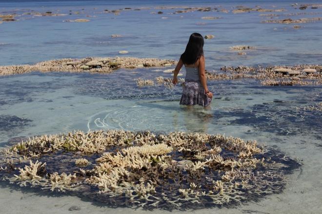 Kham pha Maldives khi khong rung rinh tien bac hinh anh 5