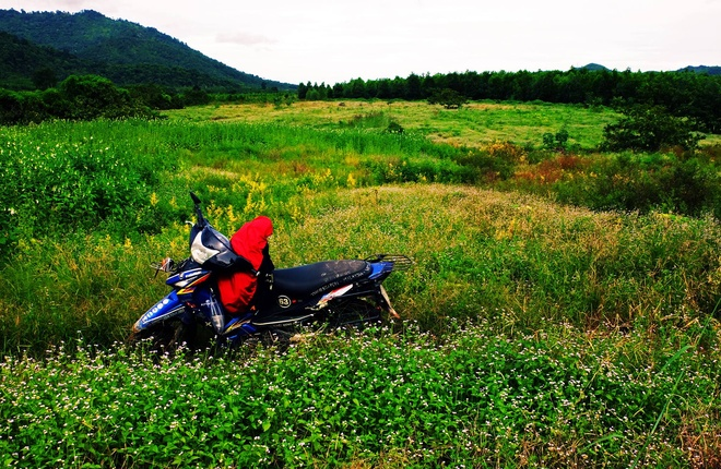 Phuot duong rung va deo dai 250 km tu TP.HCM di Phan Thiet hinh anh