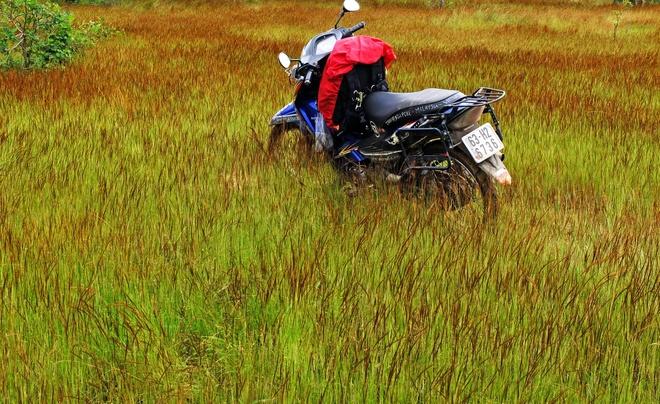 Cung duong rung Sai Gon Phan Thiet anh 2