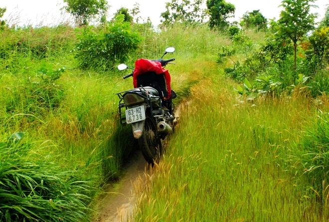 Cung duong rung Sai Gon Phan Thiet anh 4