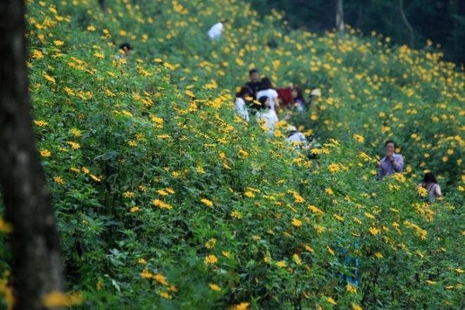 Len nui Ba Vi thuong hoa da quy hinh anh 4