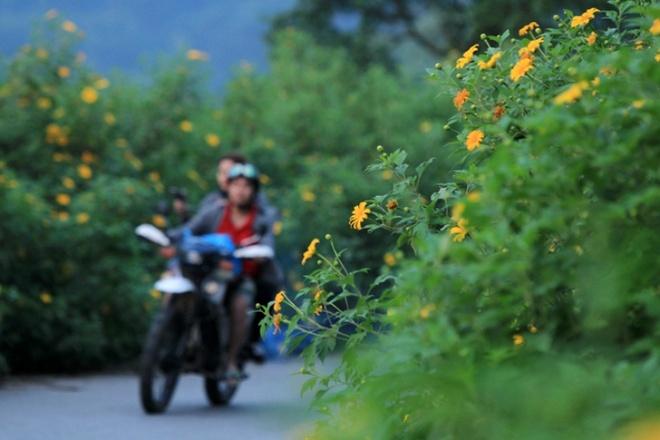 Len nui Ba Vi thuong hoa da quy hinh anh 9