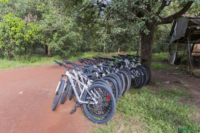 Jungle biking - thach thuc giua rung sau hinh anh 2