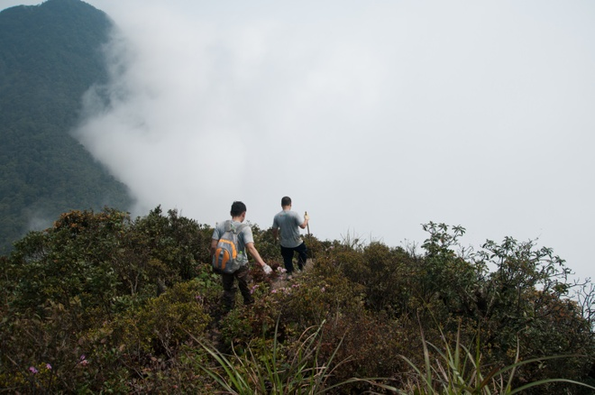Trekking 3 dinh Tam Dao - thu thach ky nghi le 30/4-1/5 hinh anh