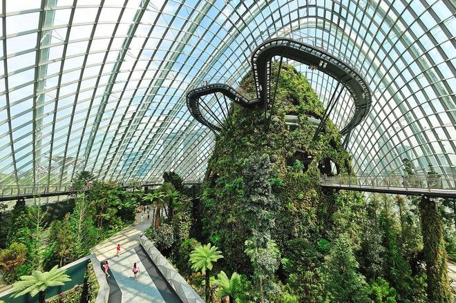 Garden by the Bay - khu vuon kinh dep quen loi ve cua Singapore hinh anh