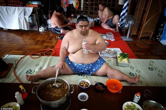 Mon lau cac do vat sumo an 10 lan moi ngay hinh anh