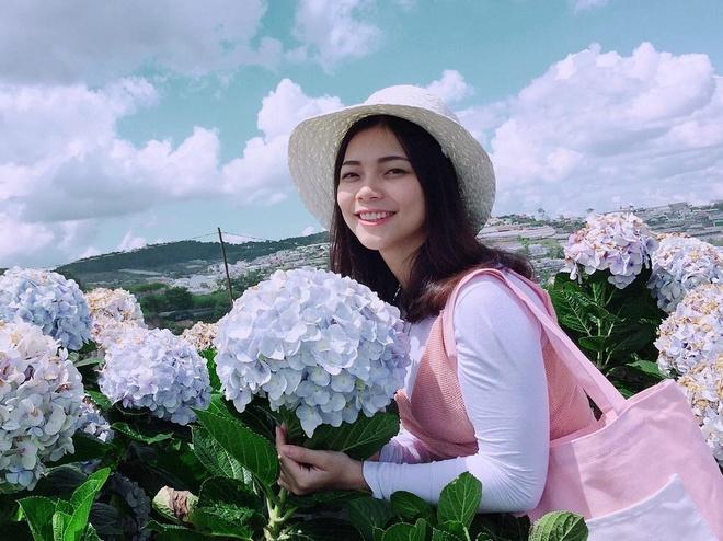 #Justgo: Vẻ đẹp thơ mộng của vườn hoa cẩm tú cầu Đà Lạt