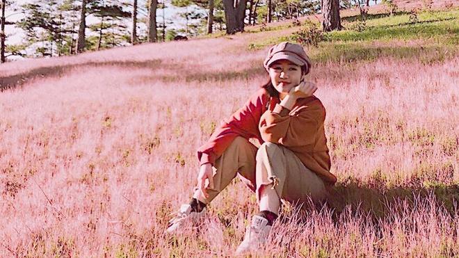#Justgo: Đồi cỏ hồng Đà Lạt đẹp nao lòng những ngày chớm đông