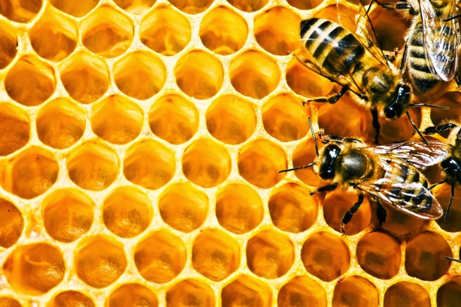 Tri benh rang mieng hieu qua bang keo ong hinh anh 3